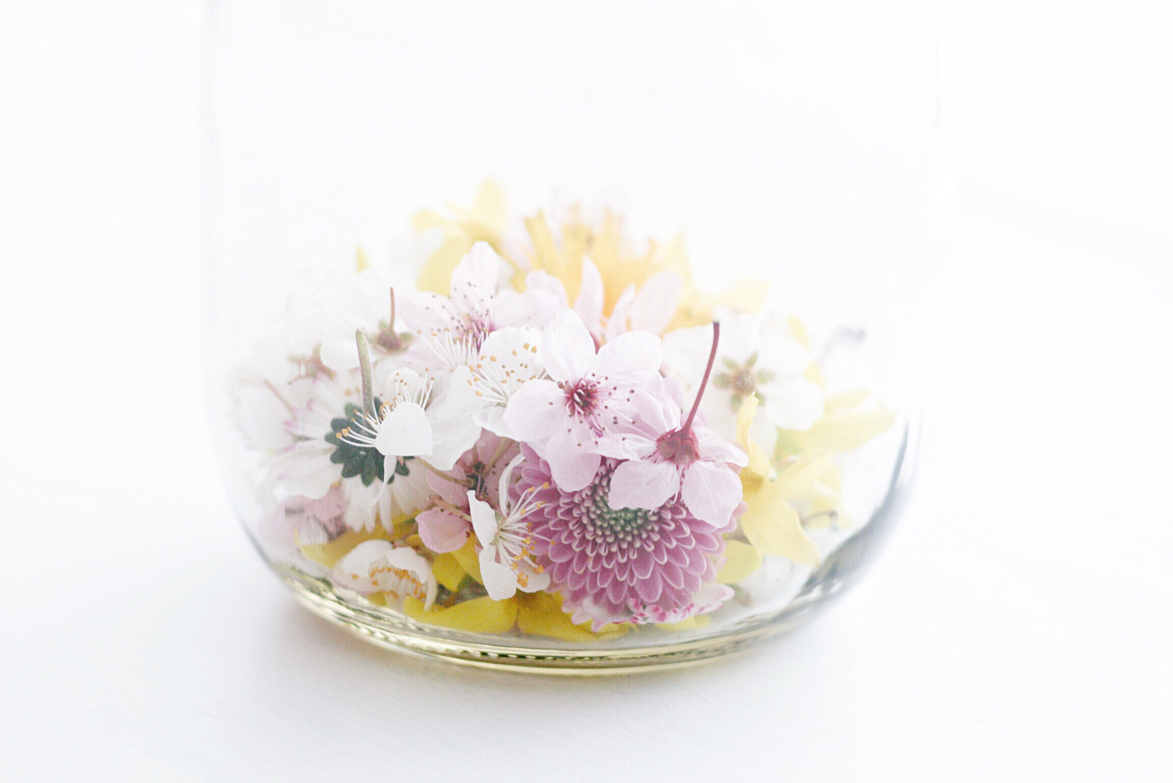Trysha Gaba - Mon bocal à bonheur (gratitude jar) 2