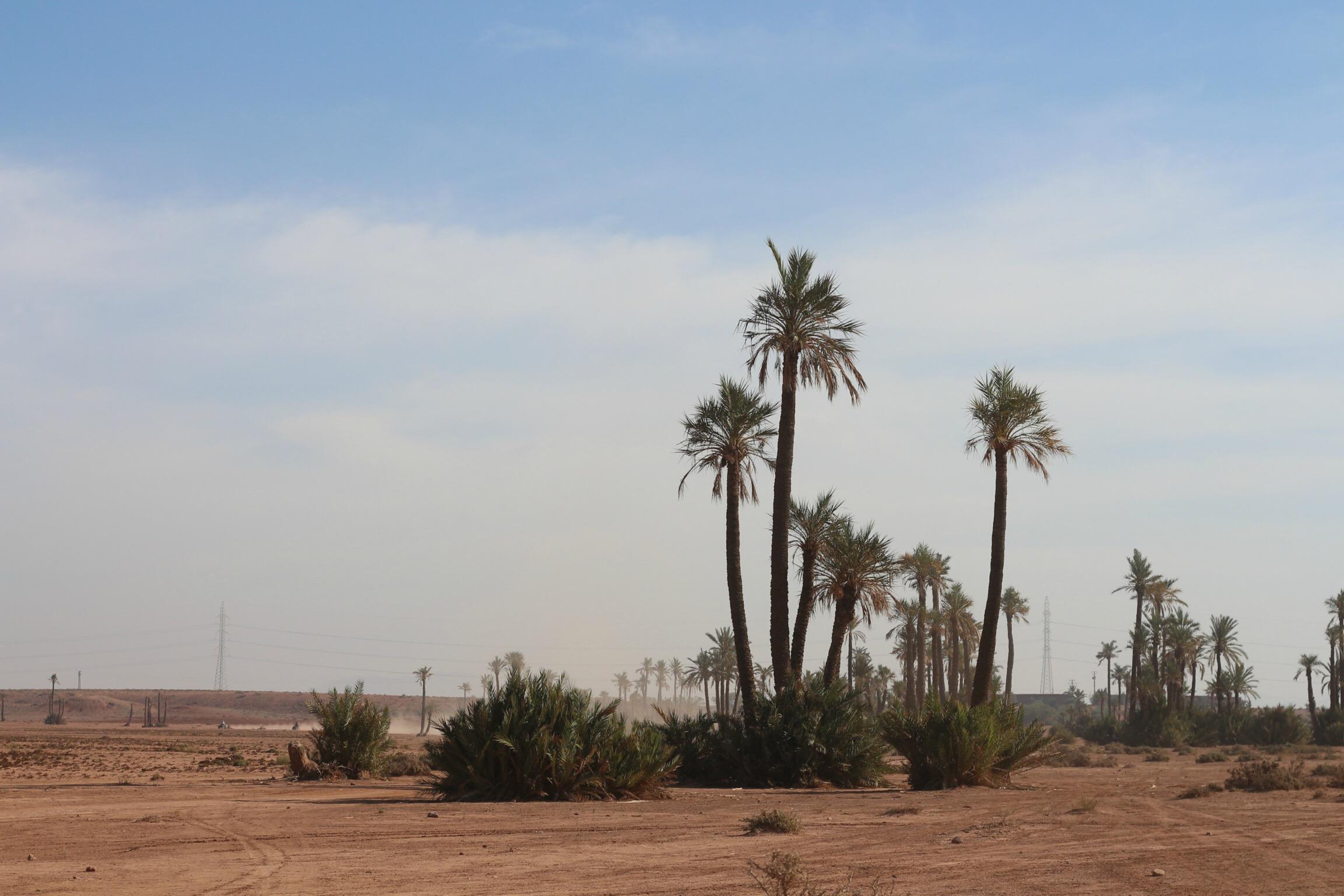 Trysha Gaba - Buggy à Marrakech avec Dunes & Déserts 4